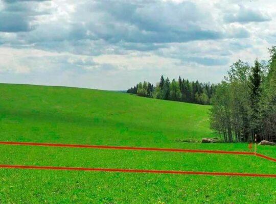 Вынос в натуру границ земельного участка